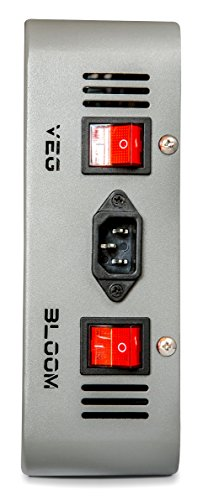 Advanced Platinum Series P300 Switch